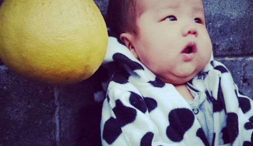 小さい子をもつママに『クワバタオハラ』の小原正子さんのブログがオススメ!!