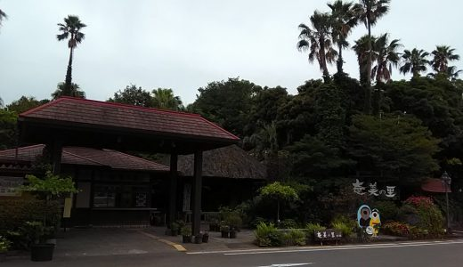 「奄美の里」鹿児島の結婚式場 South Villa Garden